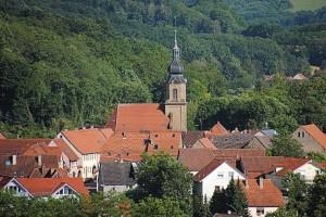wald-eichtersheim-2