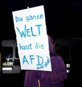 4.-fast-die-ganze-welt-hasst-die-afd-978x1024