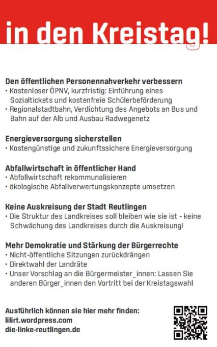 Kreistagsflyer_6